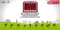 Big Gym 2010